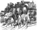 Gli_alberi_castelpoggio_1961